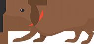 קטגוריית כלבים