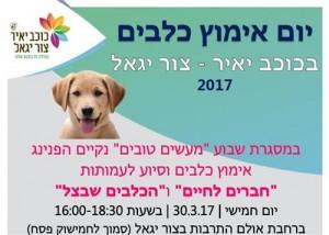 פרסום אימוץ כלבים 30.3.17